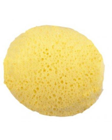 Esponja hidrofila poro...