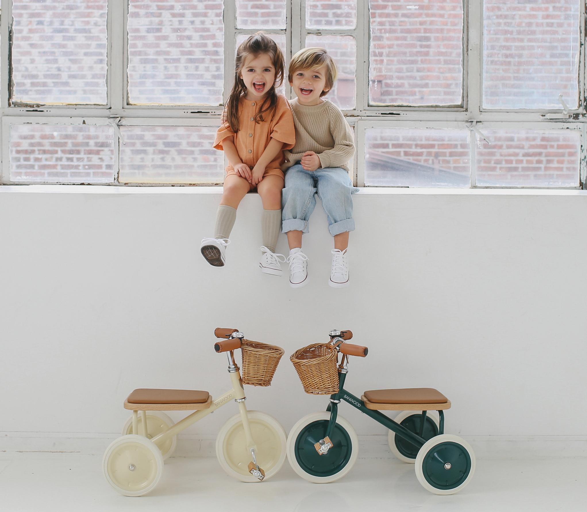 triciclo trike de ban wood